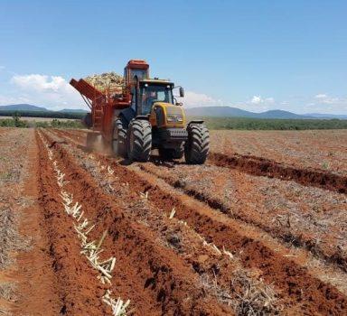 Preparação de solo para cultivo de cana de açúcar na Odebrecht Energia em Mineiros